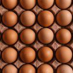В чем разница белых и коричневых яиц?