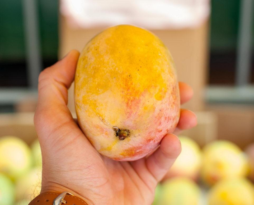 Как определить спелость манго?