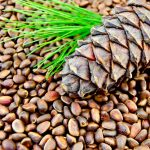 Как чистят кедровые орехи в промышленных масштабах?