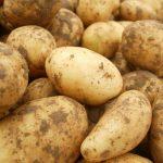 Почему картофель чернеет после варки?
